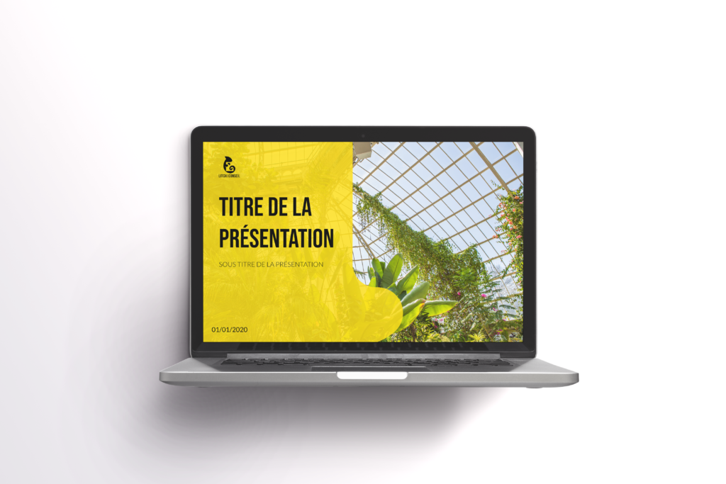 Litchi Conseil Mockup Power Point