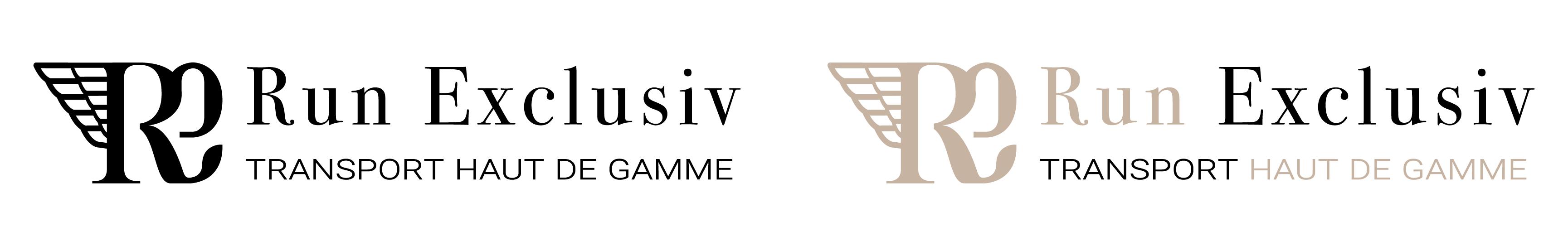 Déclinaison Logo